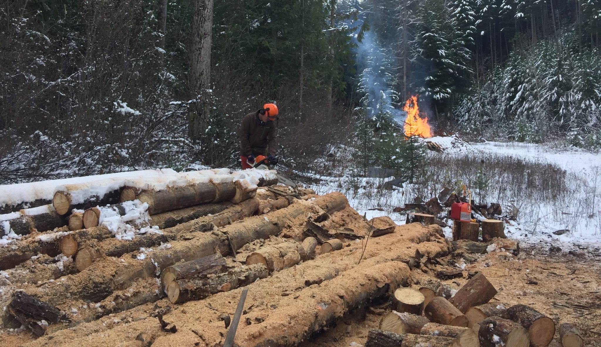 Wood Chopping at Wild Bear Lodge